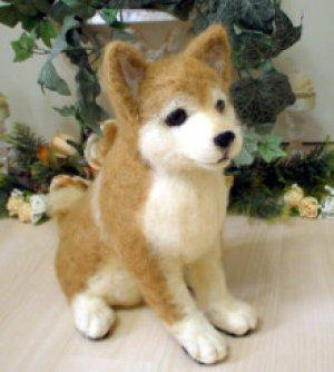 画像1: 柴犬